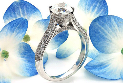 Edmonton micro pave engagement ring in white gold with round brilliant center stone.